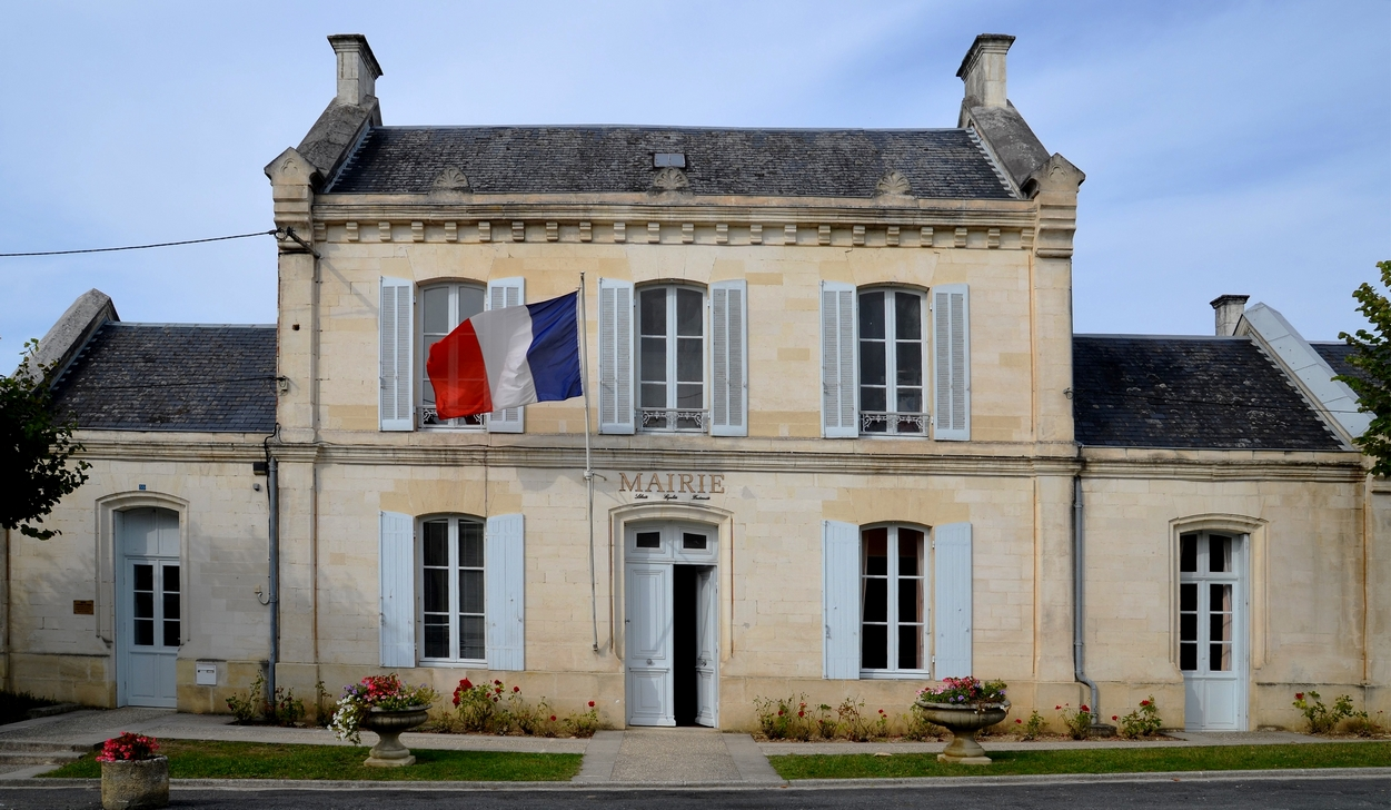 Mairie - Fruit de la ronce commune ...
